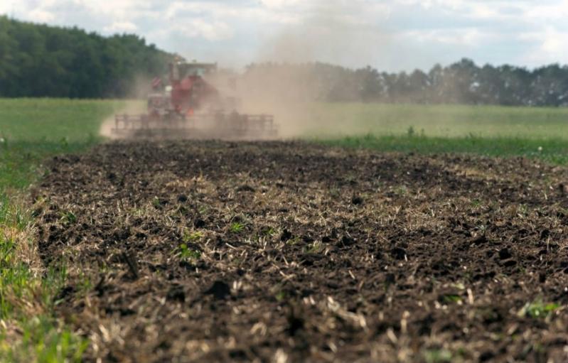 Análise de Fertilizante Profissional Preço Minas Gerais - Análise Fertilizante