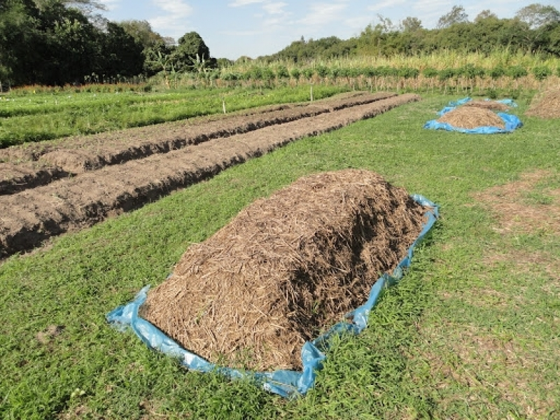 Sistema para Análise de Fertilizante Profissional Corumbá de Goiás - Fertilizantes Análise de Solo