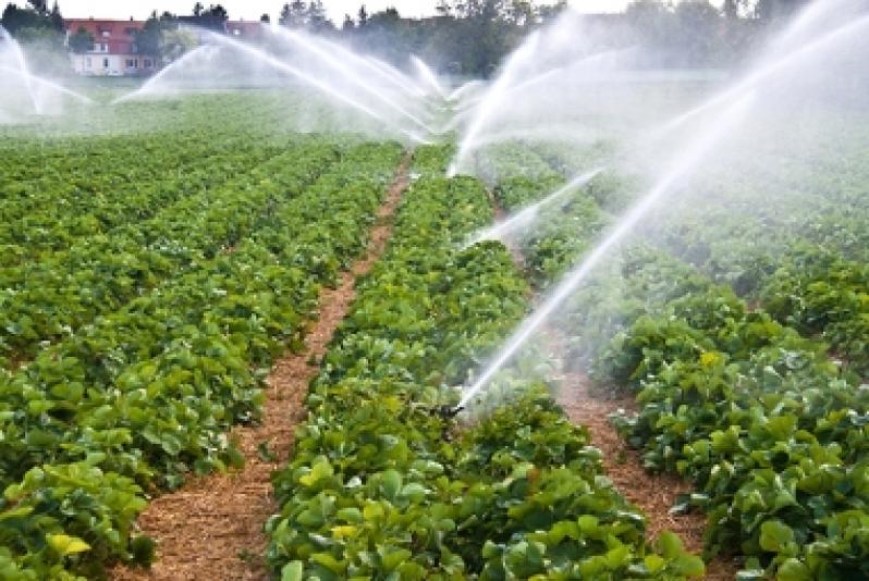 Técnico de Resultado de Análise de água para Irrigação Araguaçu - Resultado de Análise de água para Irrigação