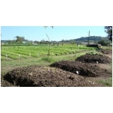 análise de fertilizante laudo preço Cabeceira Grande