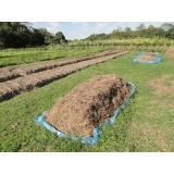 análise de fertilizante solo